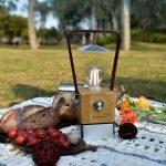 Retro LED Campinglampe Skandika Aurora beim Picknick